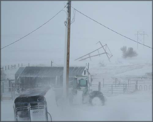 Blizzard 4-30-2011  - downed WAPA lines